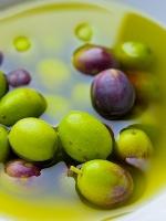 L'huile d'olive base du régime crétois