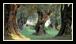 Comme pour le vin, certains terroirs ont une notoriété extraordinaire pour leurs huiles d'olive et d'autres, au contraire, souffrent d'un déficit d'image.
