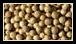 Le poivre blanc est le fruit mûr du poivrier. A maturité, l'écorce du grain de poivre devient rouge et juteuse. Les grains en sont débarrassés dans l'eau, puis ils sont séchés jusqu'à ce qu'ils blanchissent.