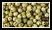 Le poivre vert est formé des fruits immatures du poivrier, que l'on utilise frais, séchés, ou lyophilisés. Les baies de poivre vert sont aussi conservées dans une saumure ou dans du sel.
