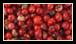 Le poivre rose est le fruit d'un grand arbre, proche parent du pistachier. Les baies pendent en longues grappes et, lorsqu'elles sont mûres, leur enveloppe extérieure prend une couleur rose vif.