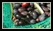 A la différence du vin qui se bonifie avec le temps, l'huile d'olive doit être idéalement consommée dans l'année.