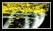 Les huiles d'olive font l'objet du classement et des dénominations suivants (Consulter la Règlementation )